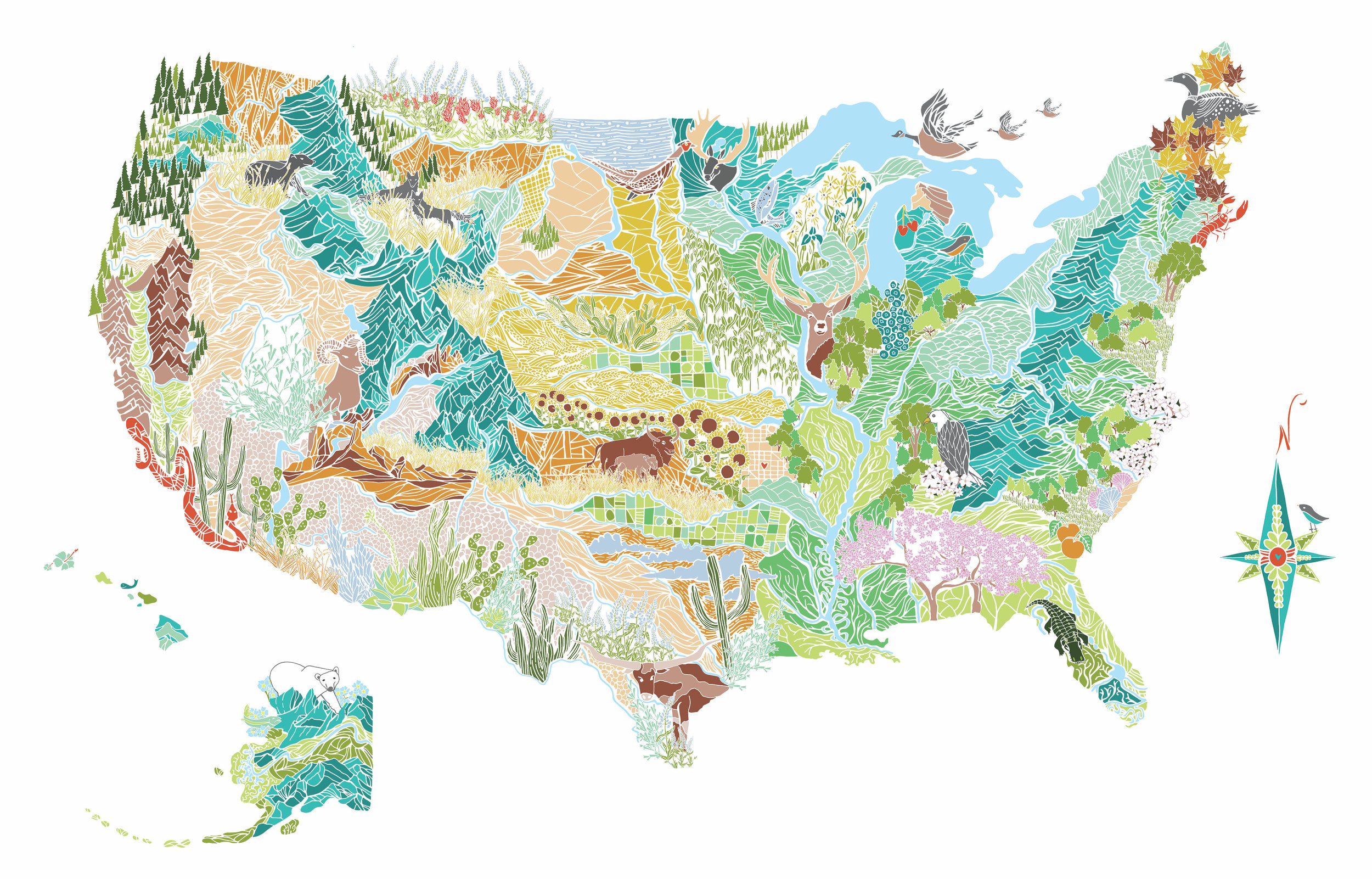 map - flora and fauna web.jpg