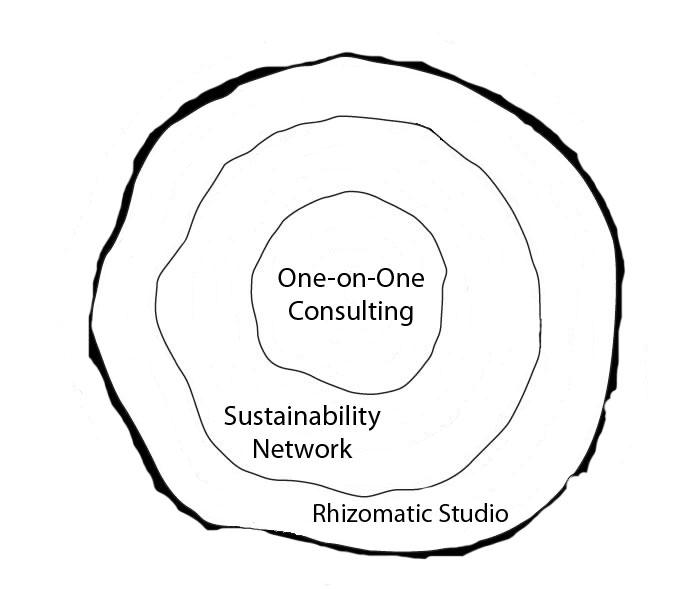 The business structure of Rhizomatic Arts.  http://rhizomaticarts.com