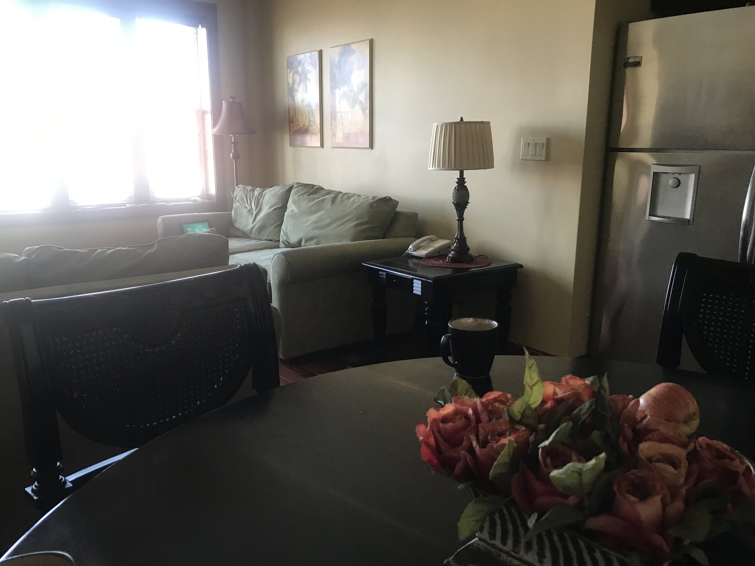 the-new-room-ocnj-2019.JPG