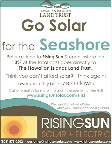 Client: Rising Sun Solar Product: Event Flyer