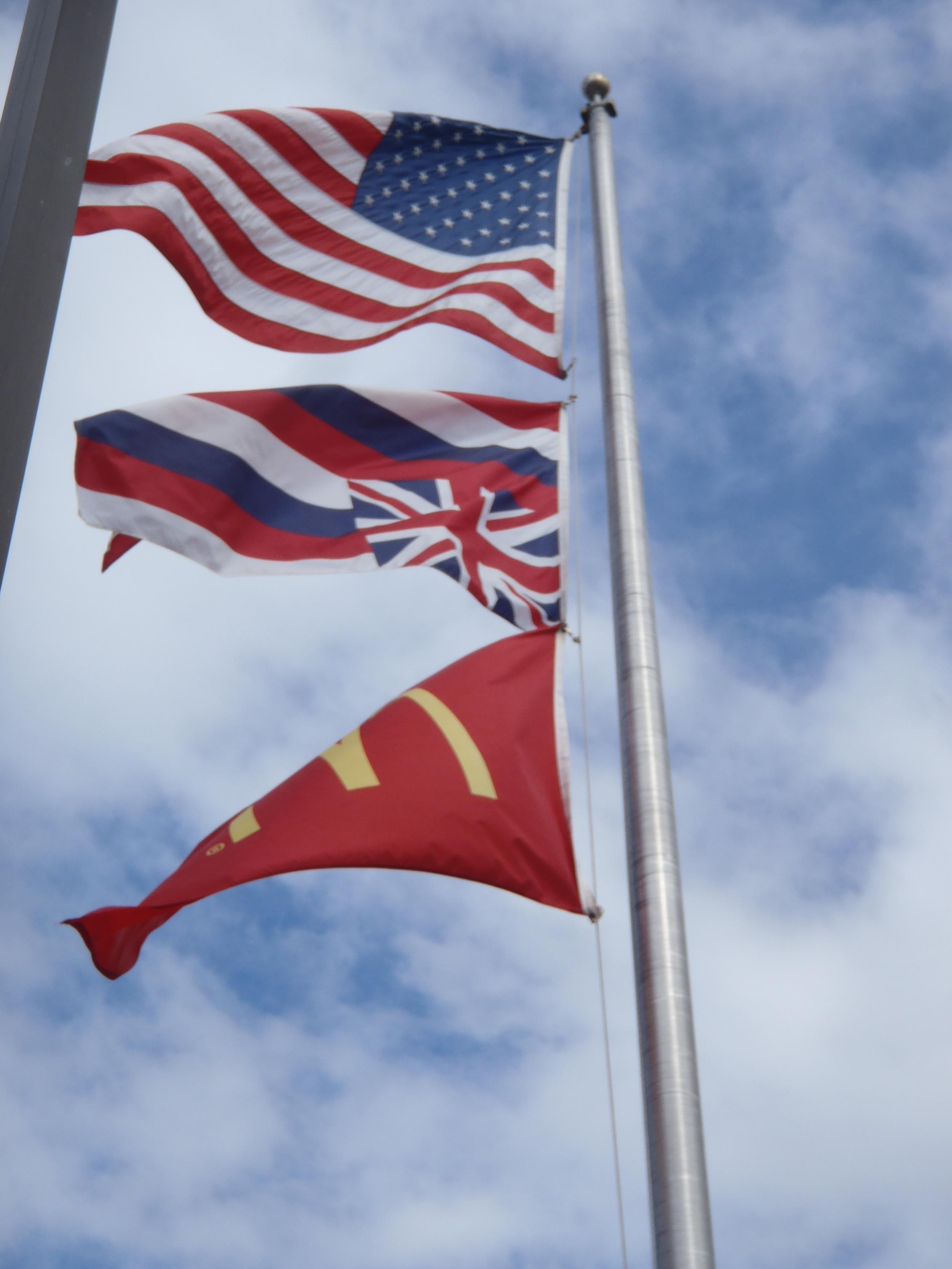 McDs Flag2.jpg