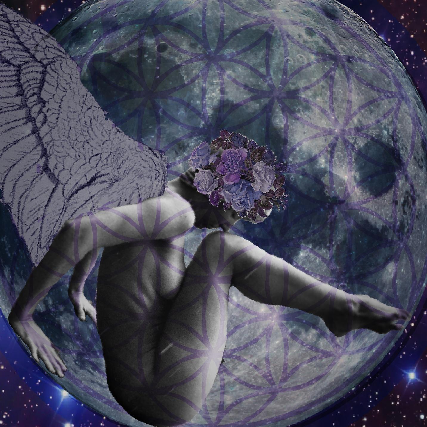 Gemini Moonflower