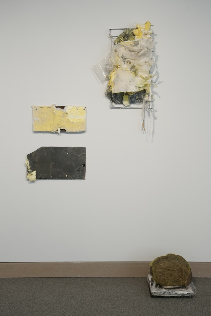 "A Good Stuffing , 2013, steel, foam, cotton, plastic, petroleum jelly, graphite, lichen, slate,wood, and paper, 46 x 38 x 6 in.                         0     false             18 pt     18 pt     0     0         false     false     false                                                   /* Style Definitions */ table.MsoNormalTable 	{mso-style-name:""Table Normal""; 	mso-tstyle-rowband-size:0; 	mso-tstyle-colband-size:0; 	mso-style-noshow:yes; 	mso-style-parent:""""; 	mso-padding-alt:0in 5.4pt 0in 5.4pt; 	mso-para-margin:0in; 	mso-para-margin-bottom:.0001pt; 	mso-pagination:widow-orphan; 	font-size:12.0pt; 	font-family:""Times New Roman""; 	mso-ascii-font-family:Cambria; 	mso-ascii-theme-font:minor-latin; 	mso-fareast-font-family:""Times New Roman""; 	mso-fareast-theme-font:minor-fareast; 	mso-hansi-font-family:Cambria; 	mso-hansi-theme-font:minor-latin;}"
