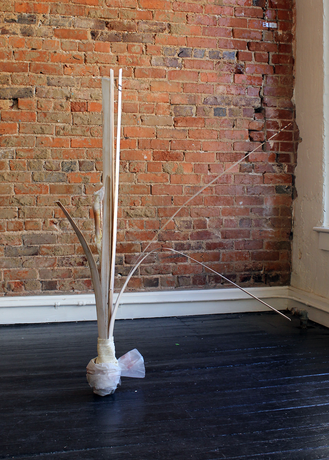 Mother In-Law Tongue Plant , Harriet Hoover, 2015, plastic water bottle, concrete, cotton, tape, and wood sculpture