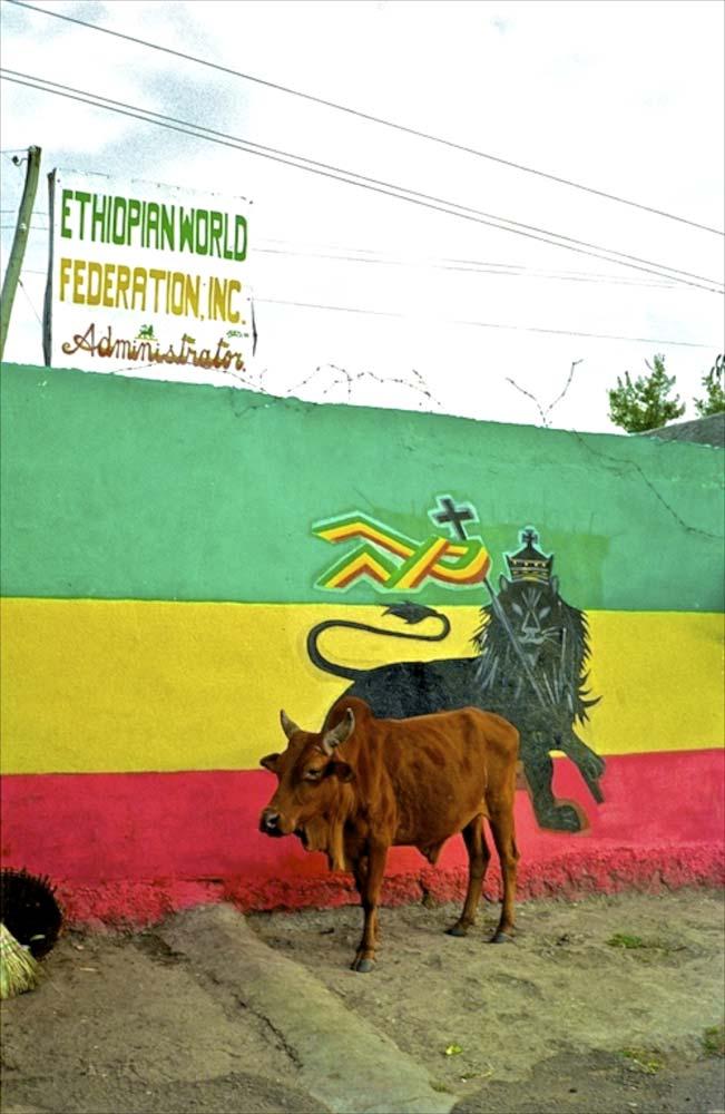 Shasehmane Ethiopia