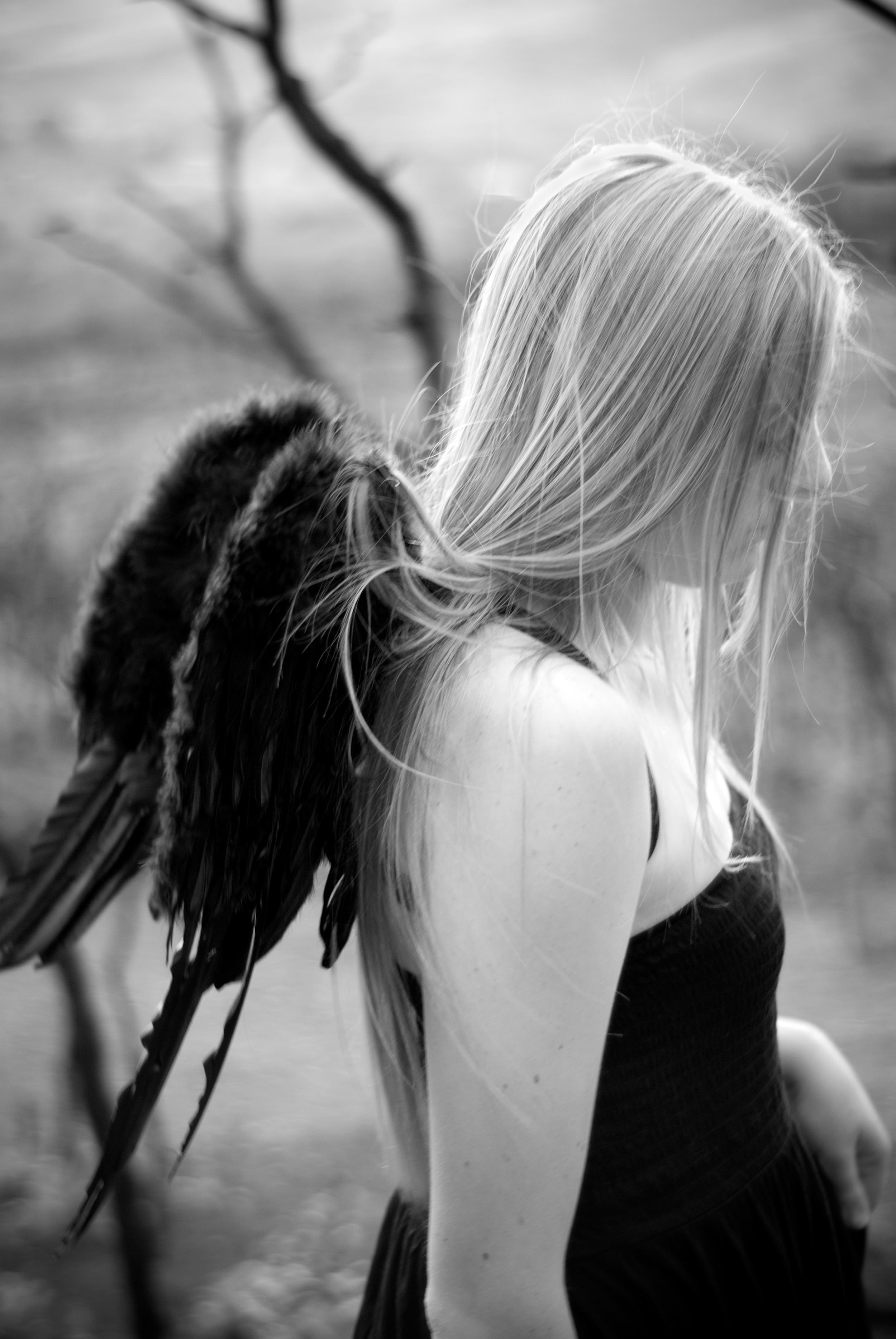 blackwings2.jpg