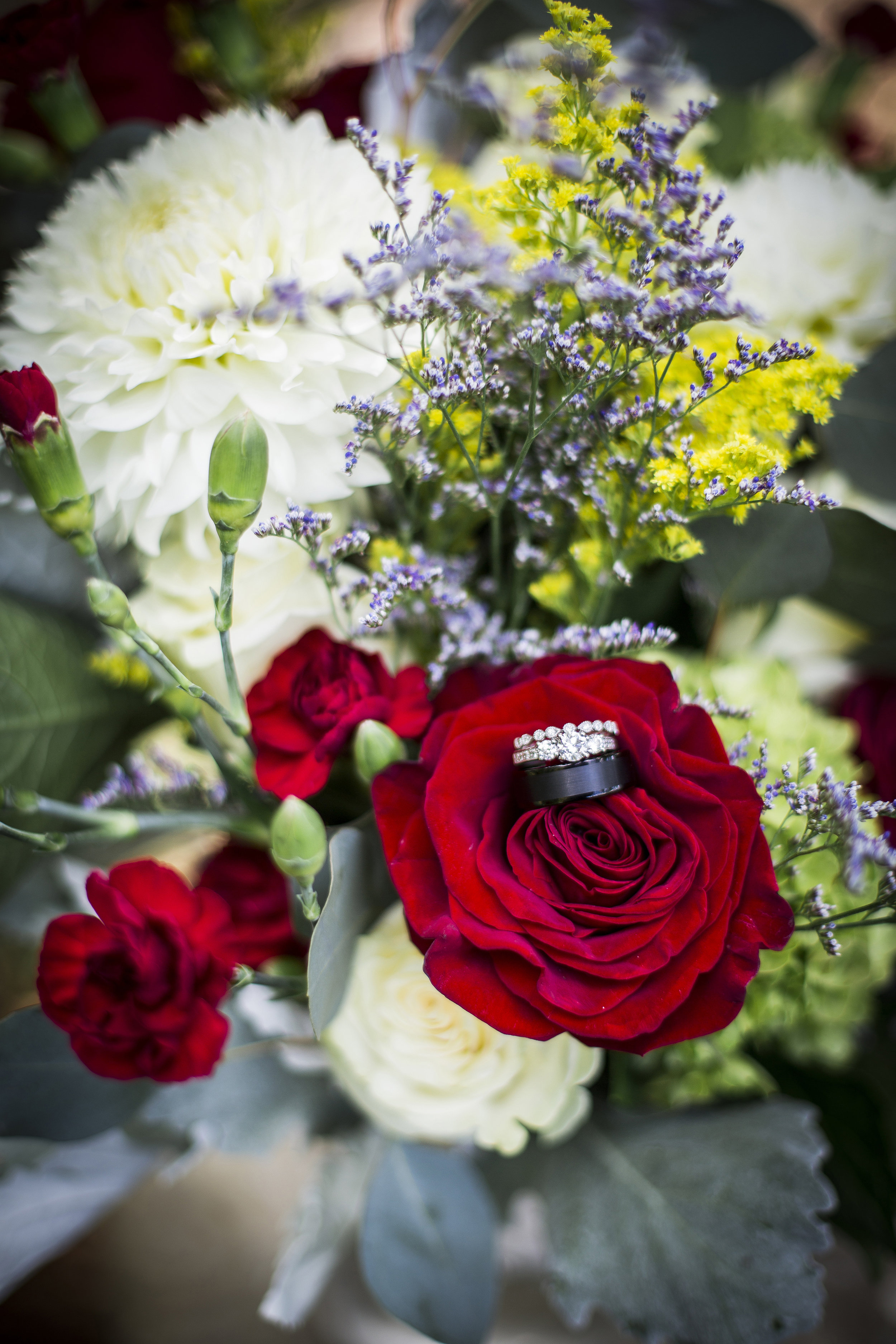 Seattle-Tacoma-Wedding-Photographer-Jaeda-Reed-Fall-Glenwood-Tree-Farm-01.jpg