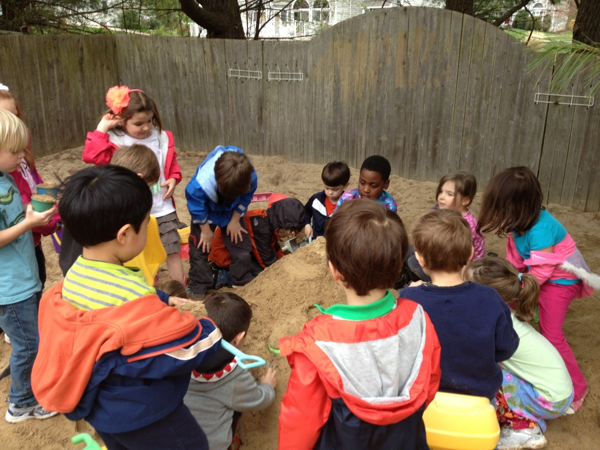 Kindergarteners,Grasshoppers and Butterflies working together