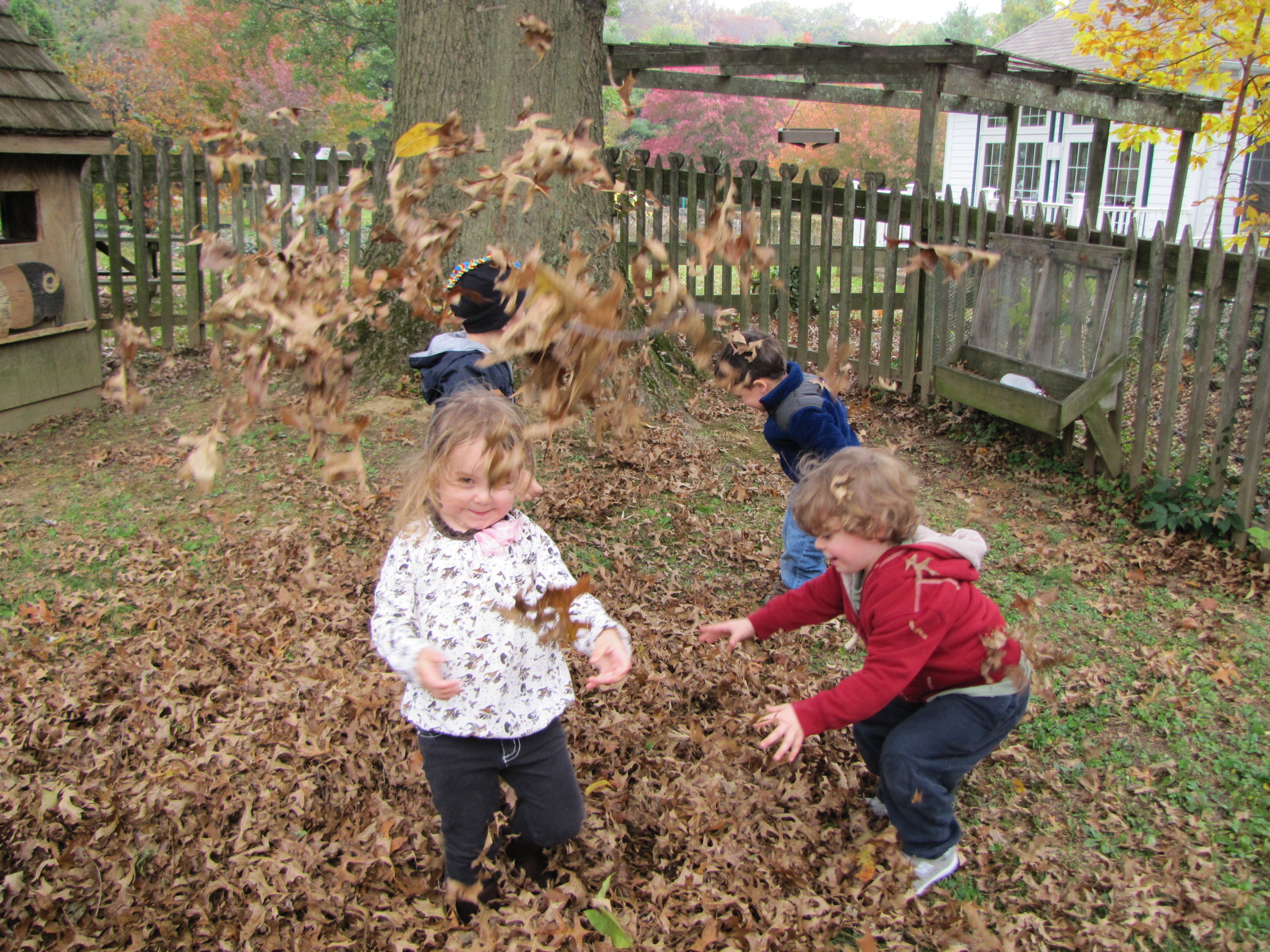 fun in the leaves!
