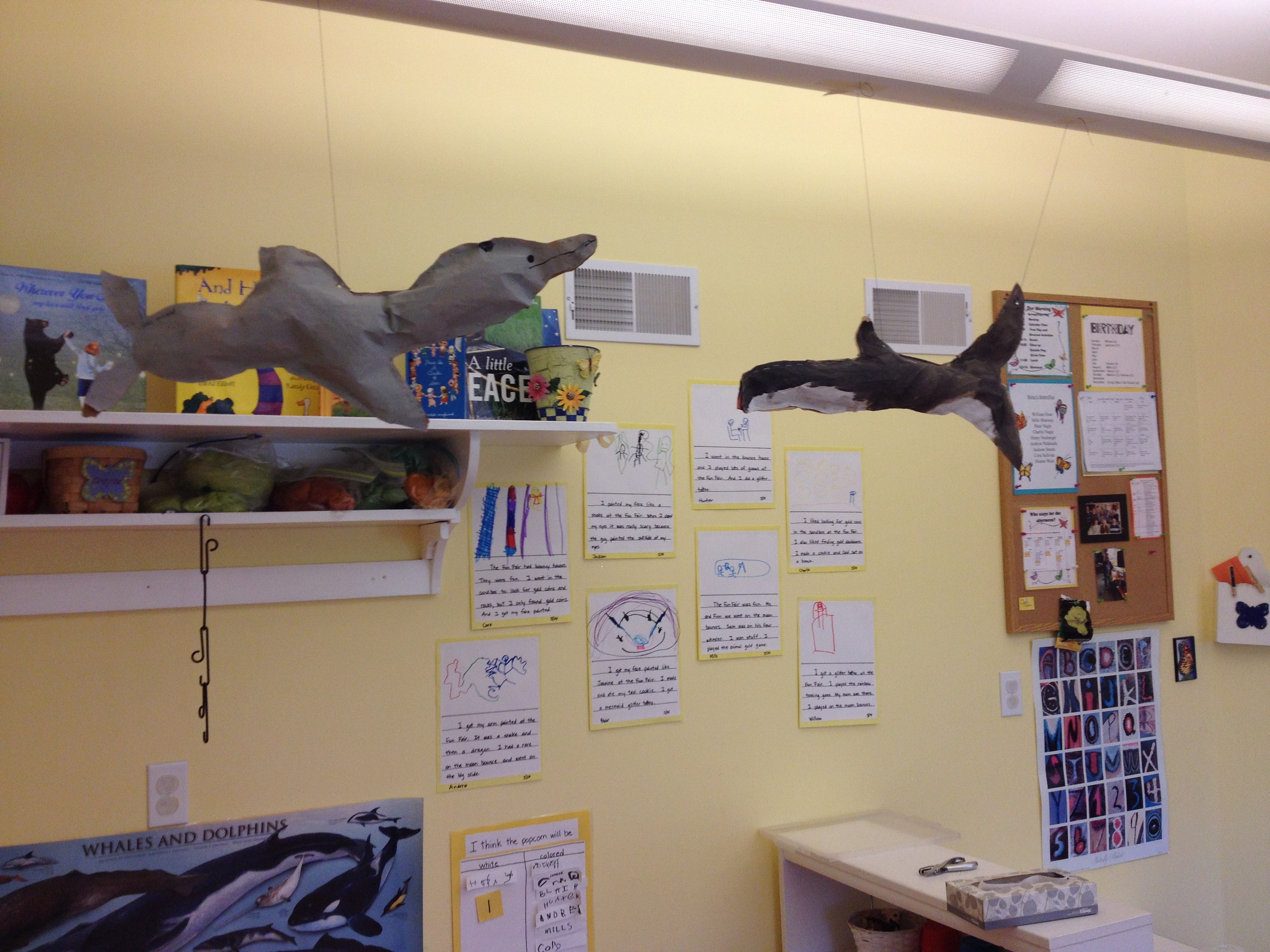 bottlenose  dolphin and orca
