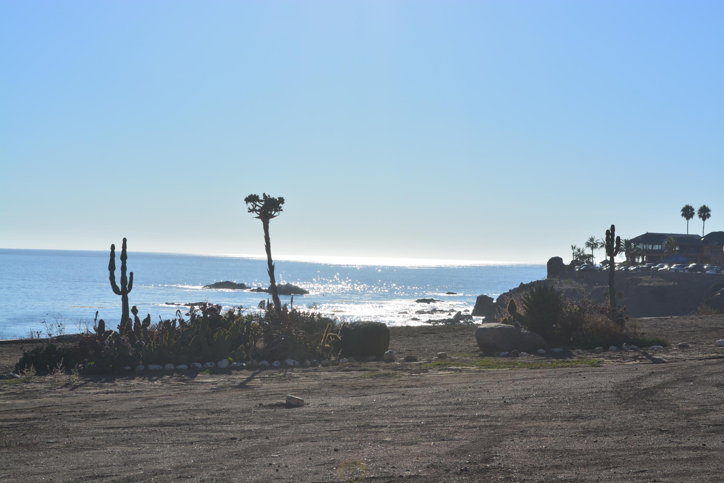 Ocean Experience Surf School Baja Mexico Surfing Adventure (5).JPG