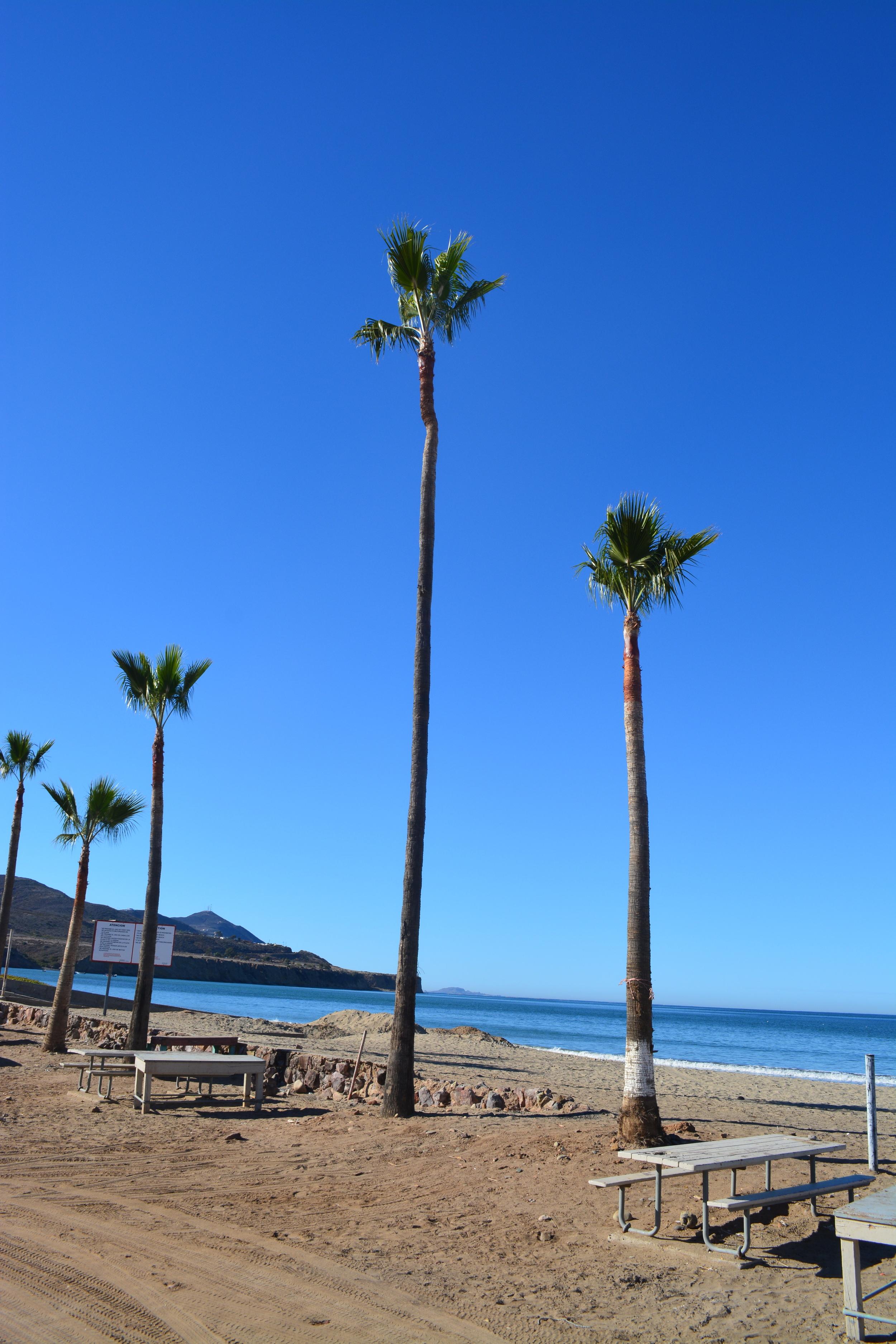Ocean Experience Surf School Baja Mexico Surfing Adventure (44).JPG