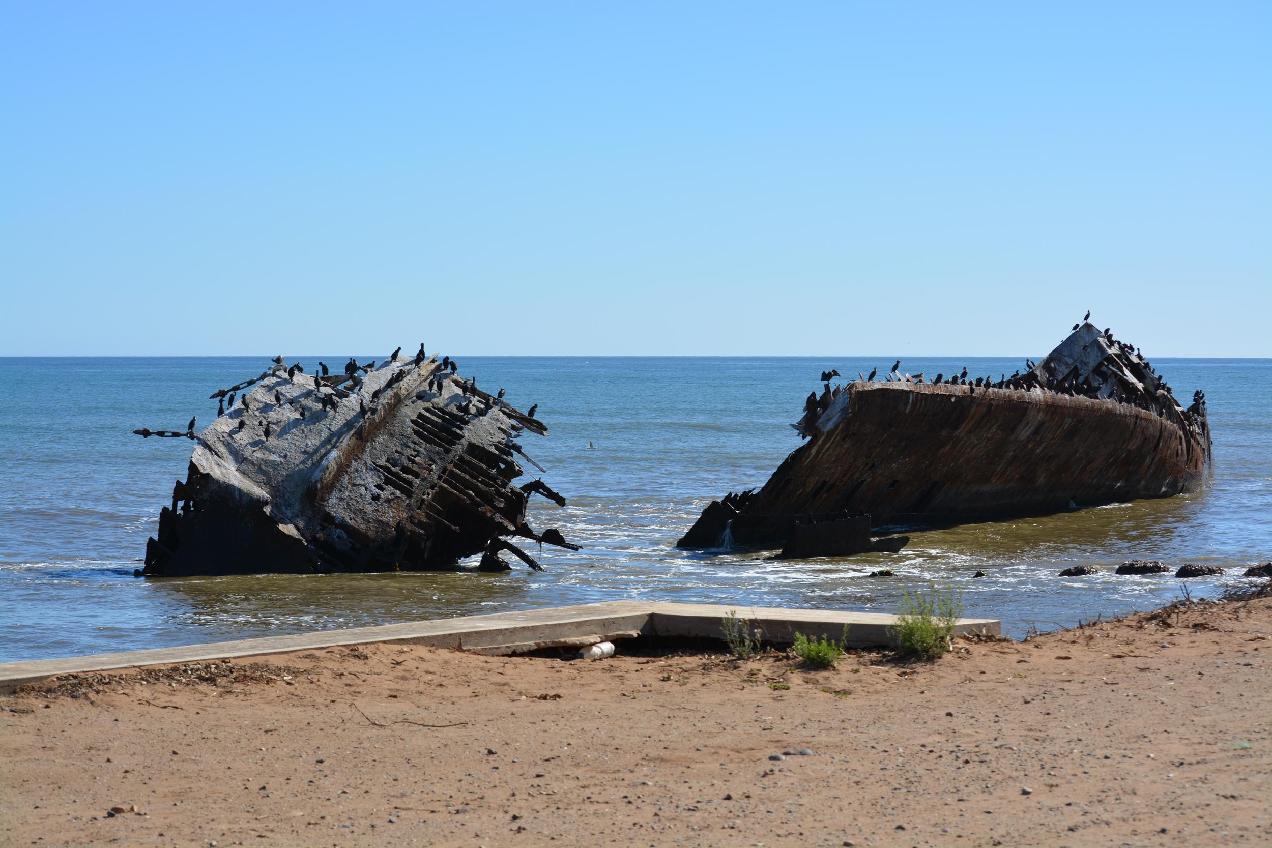 Baja California 10-5-13 Shipwrecks Surfing Adventure Ocean Experience Surf School San Diego (66).JPG