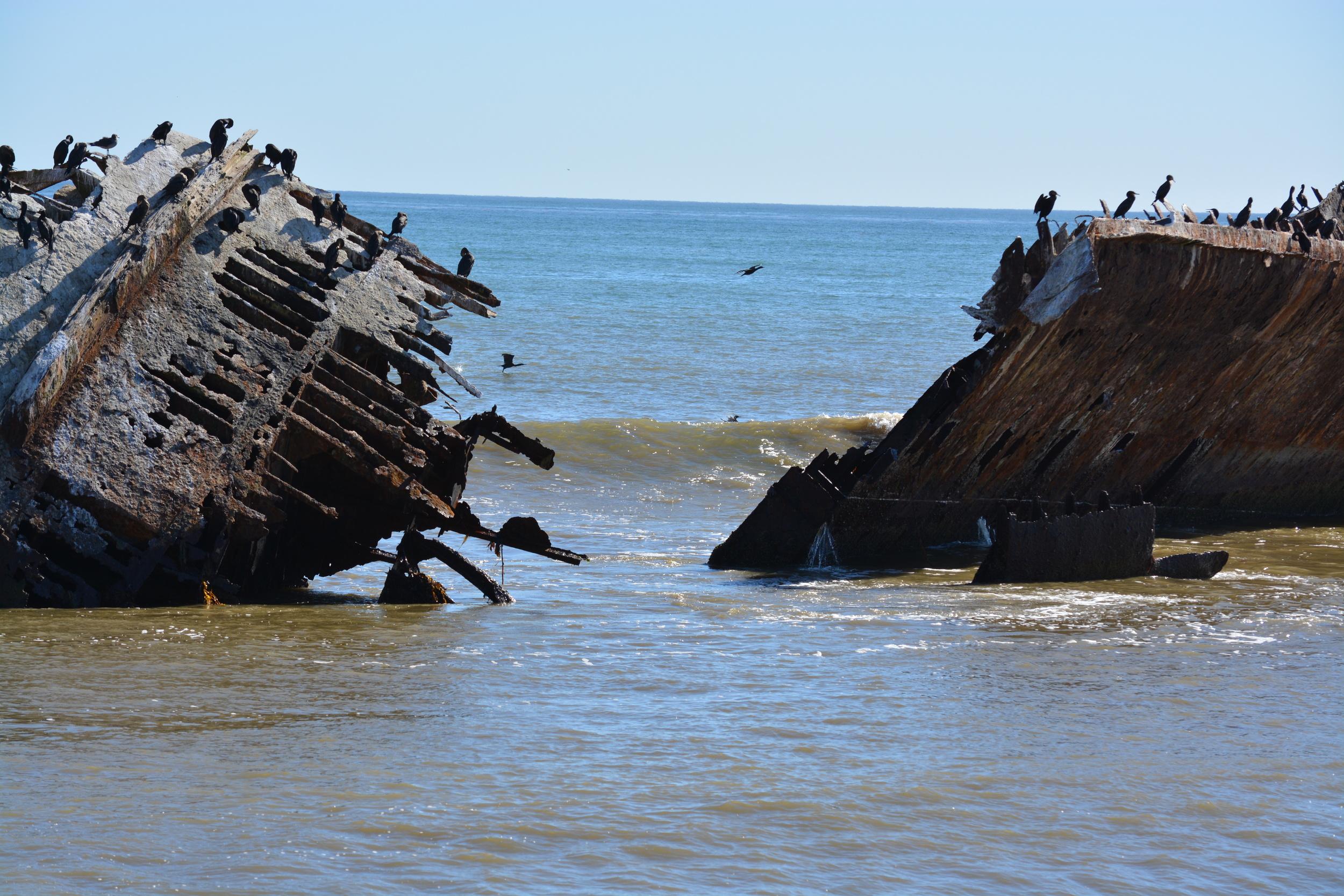 Baja California 10-5-13 Shipwrecks Surfing Adventure Ocean Experience Surf School San Diego (71).JPG