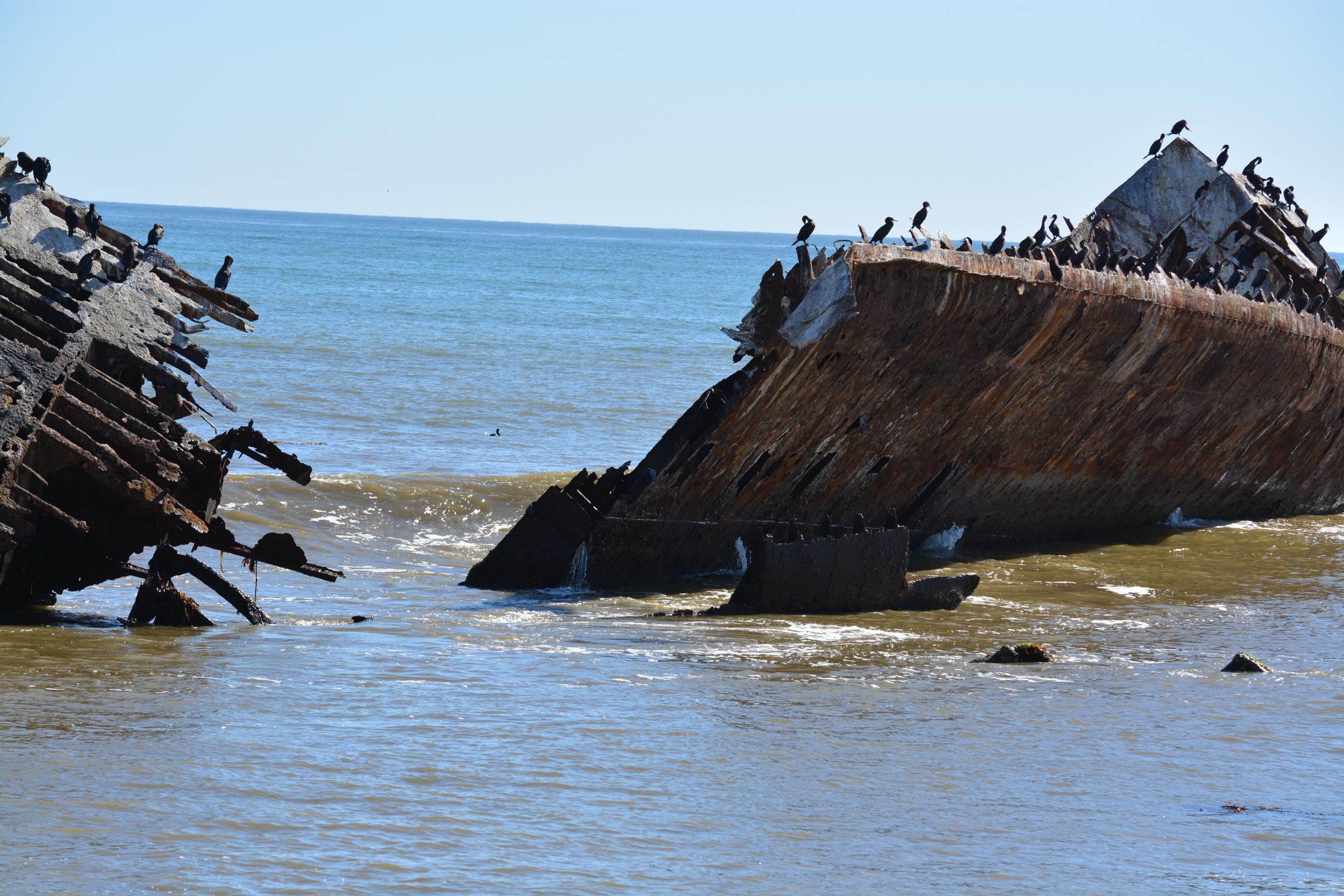 Baja California 10-5-13 Shipwrecks Surfing Adventure Ocean Experience Surf School San Diego (73).JPG