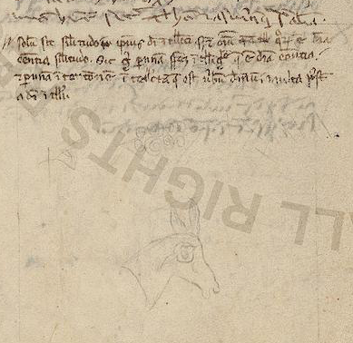 Thomas's writing, Reginald's, and then a doodle (f. 14 vb)