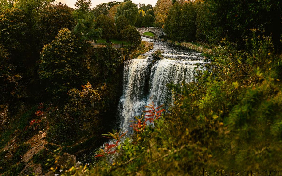 Webster-Falls-Photographer-Dundas-Wedding-018.jpg