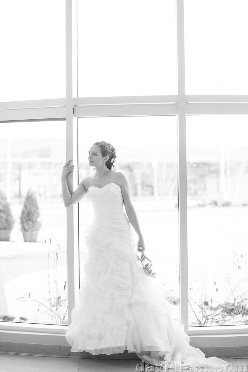 Burlington-Wedding-Photographer-Carmens-Hamilton-Photography-042.jpg