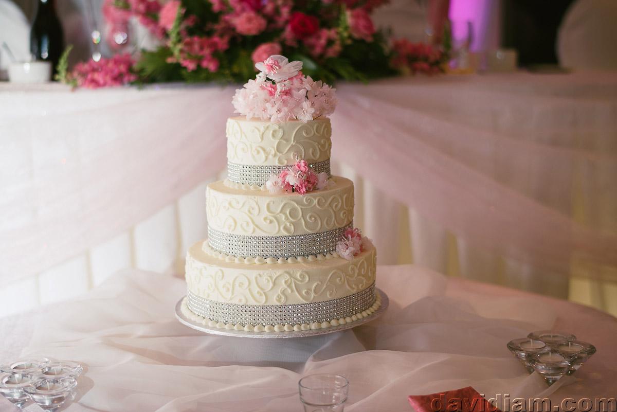 Burlington-Wedding-Photographer-Carmens-Hamilton-Photography-047.jpg