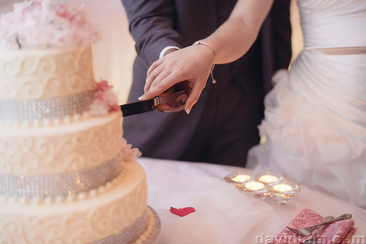 Burlington-Wedding-Photographer-Carmens-Hamilton-Photography-062.jpg