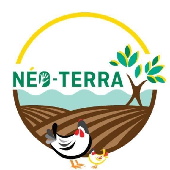 Poules à la maison! - Le cours en ligne de l'école Néo-Terra, juste magnifique et ultra complet (cliquez sur l'image pour accéder à la description complète du cours!)