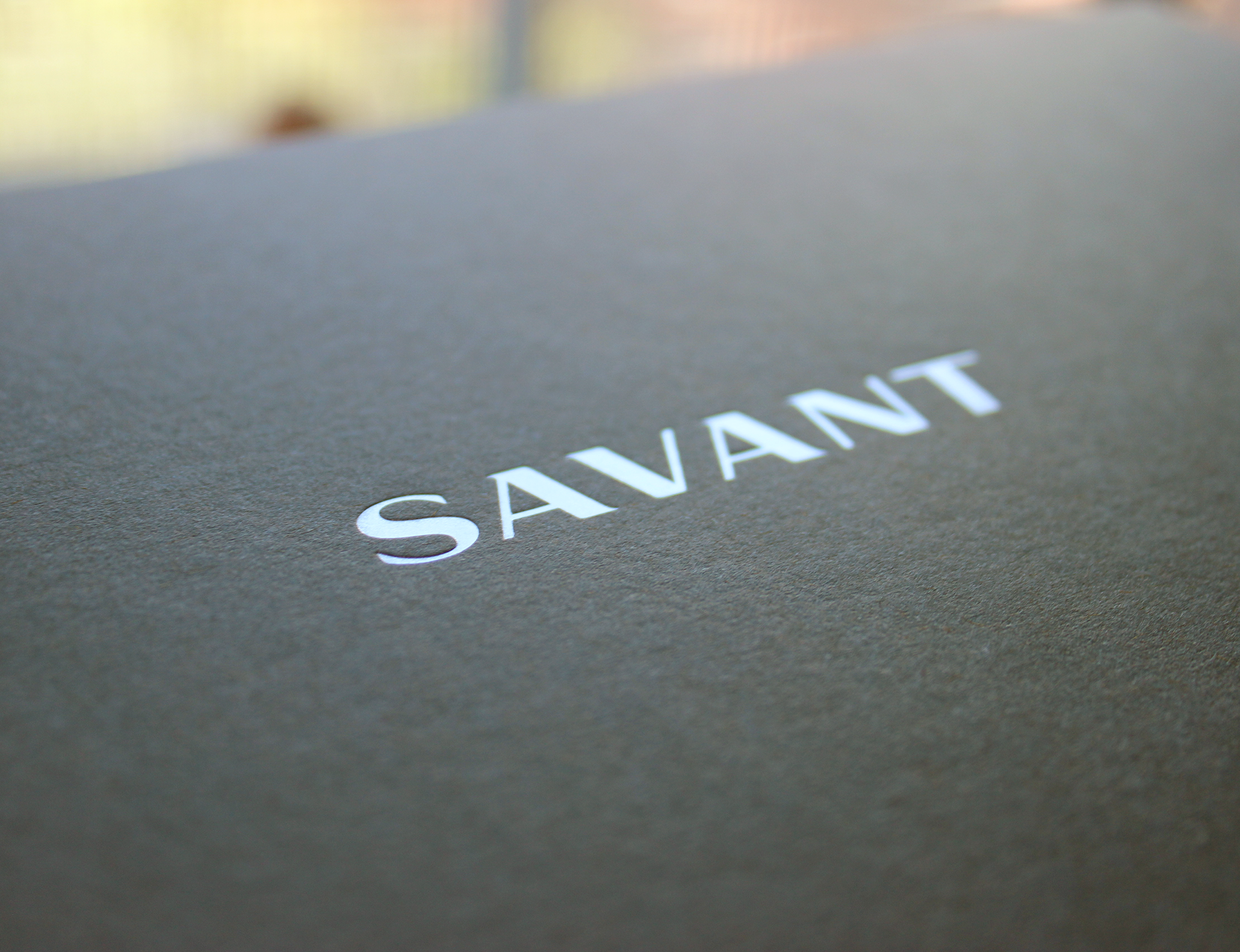 savant-cover3.png