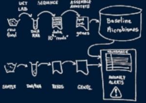 AnalyticsProcess.jpg