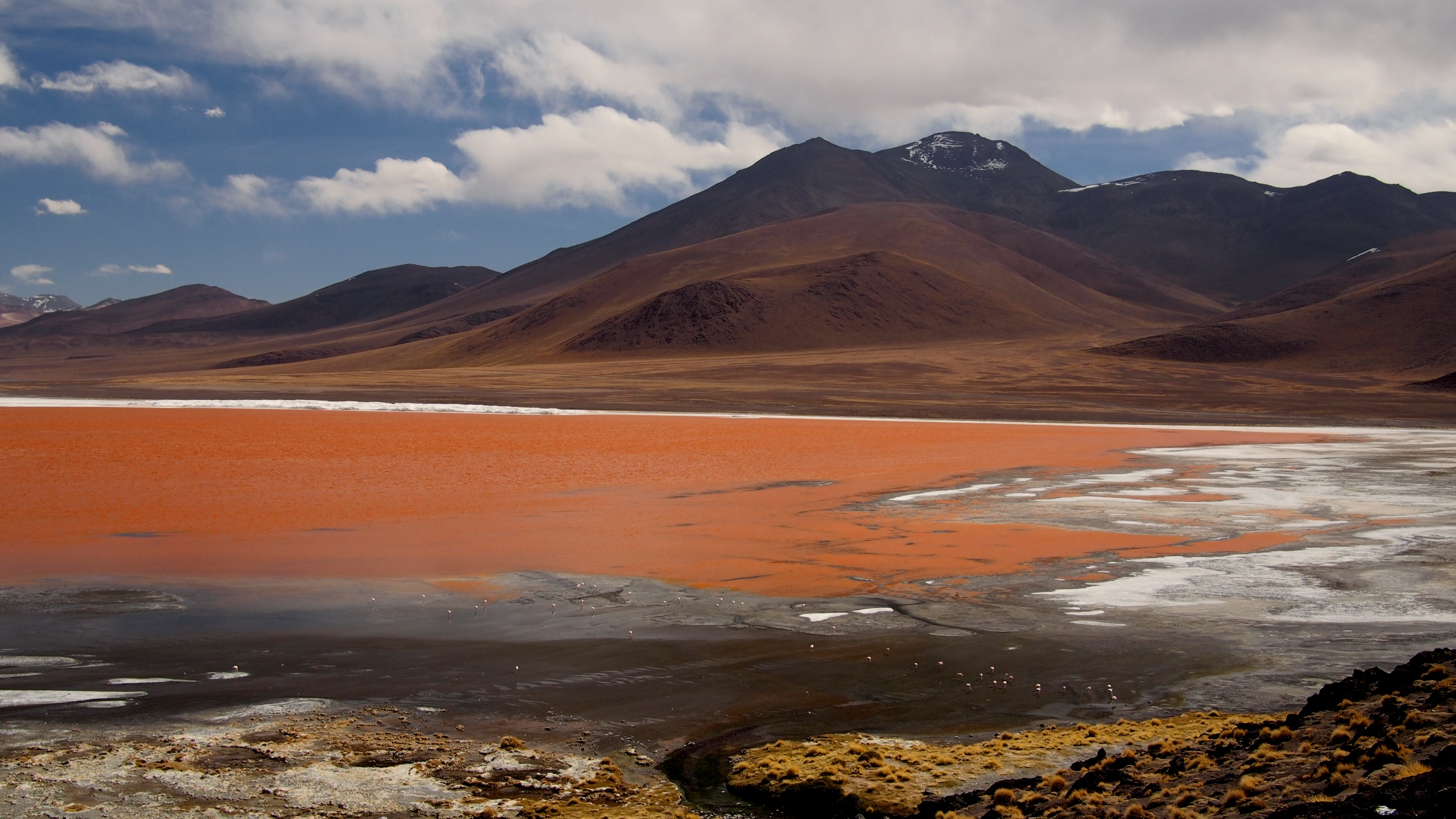 Laguna Colorada, a shallow lagoon with an average depth of 45 cm. The bright red color changes throughout the day due to the pigments of a microscopic algae species