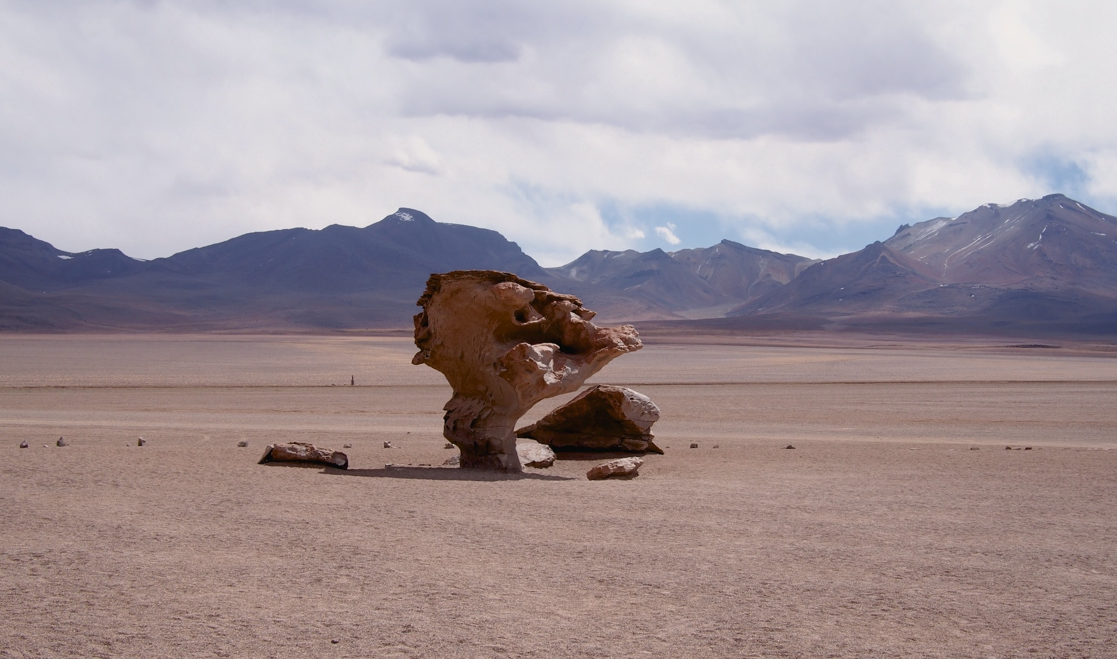Arbol de Piedra, a rock formation shaped like a giant tree by erosion in the middle of the Siloli desert