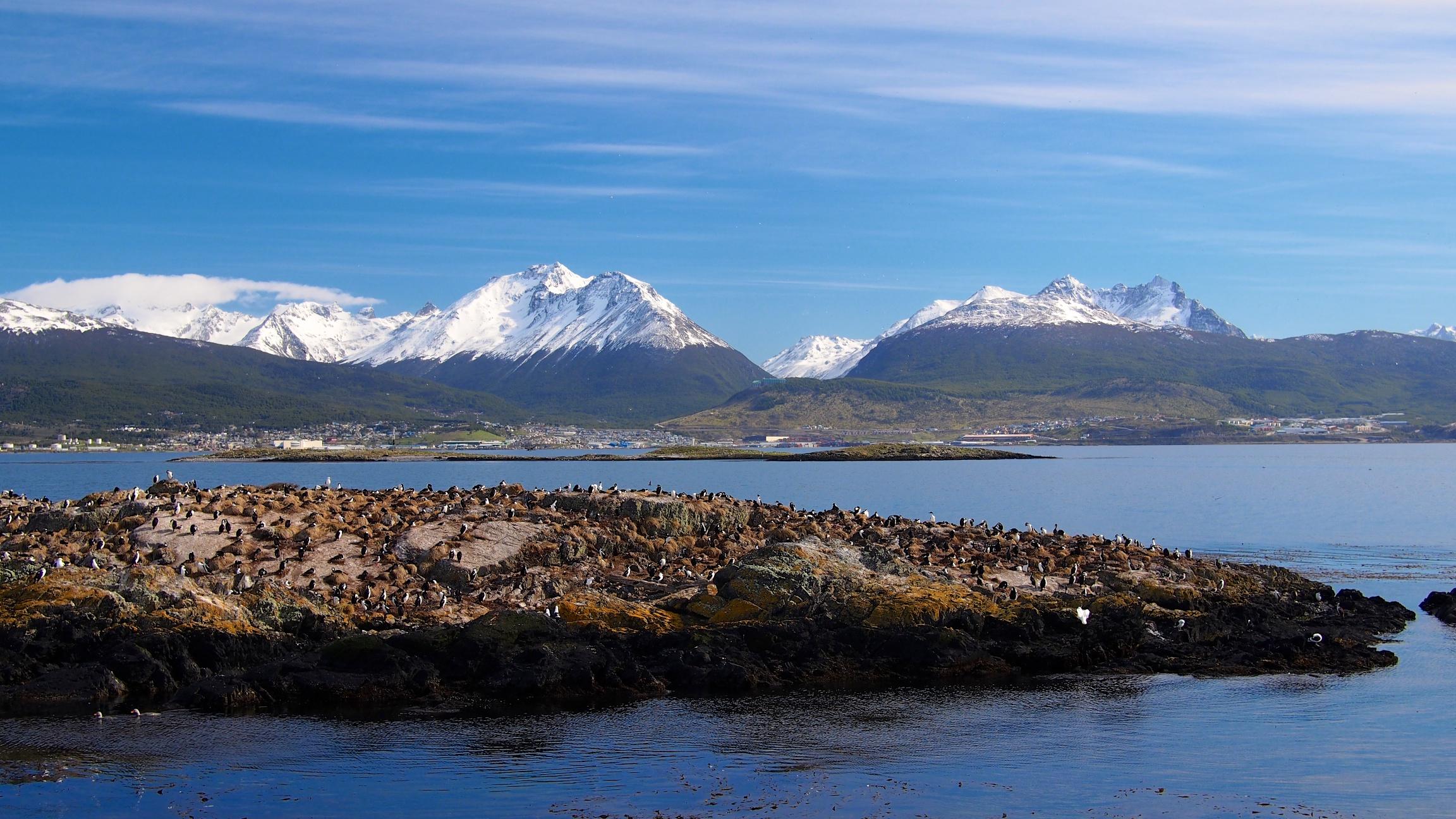 Islets full of sea lions and cormorants