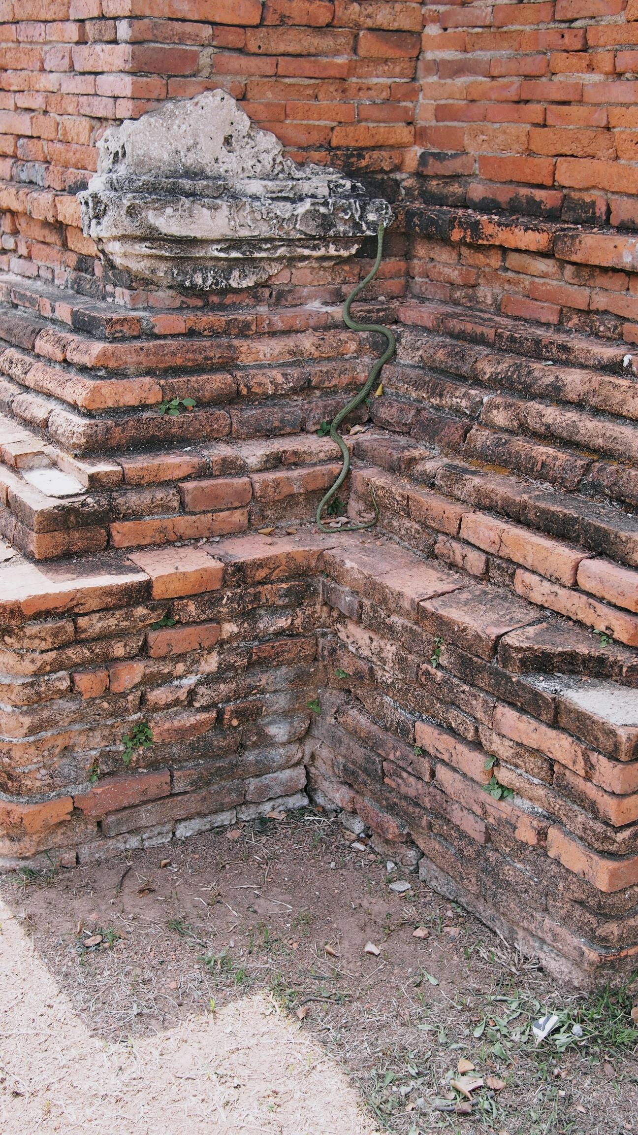 ayutthaya 38.jpg