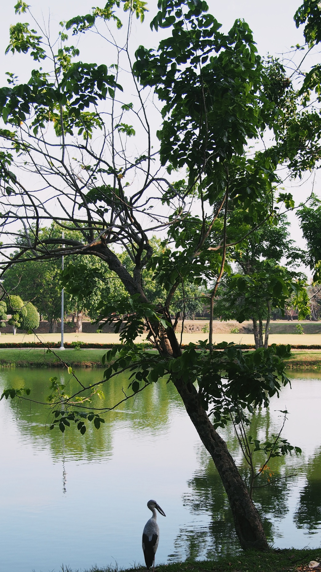 ayutthaya 32.jpg
