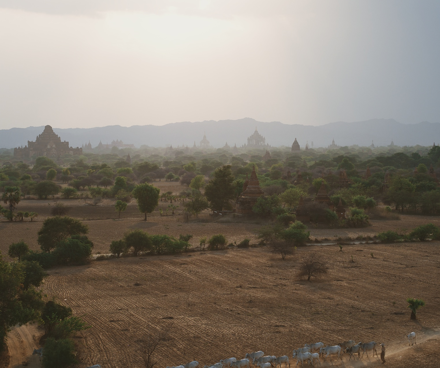 View From Pyathada Temple