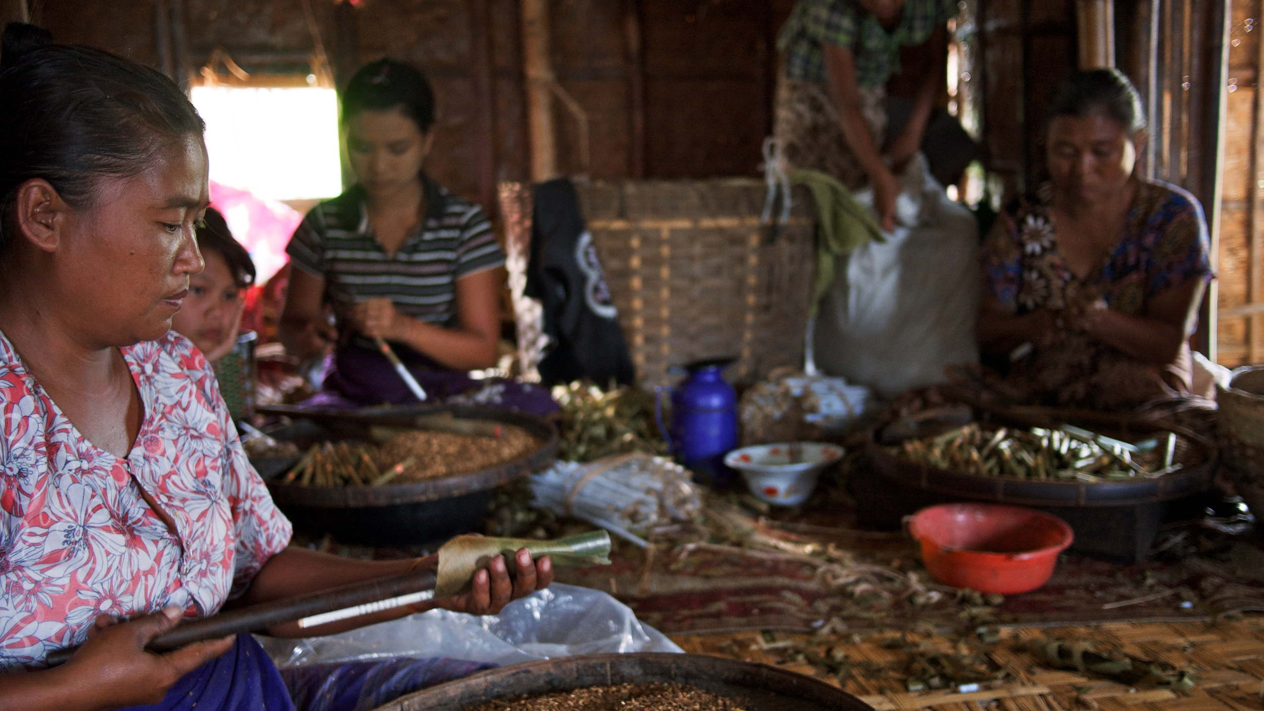 Each woman makes 500-700 cigars per day