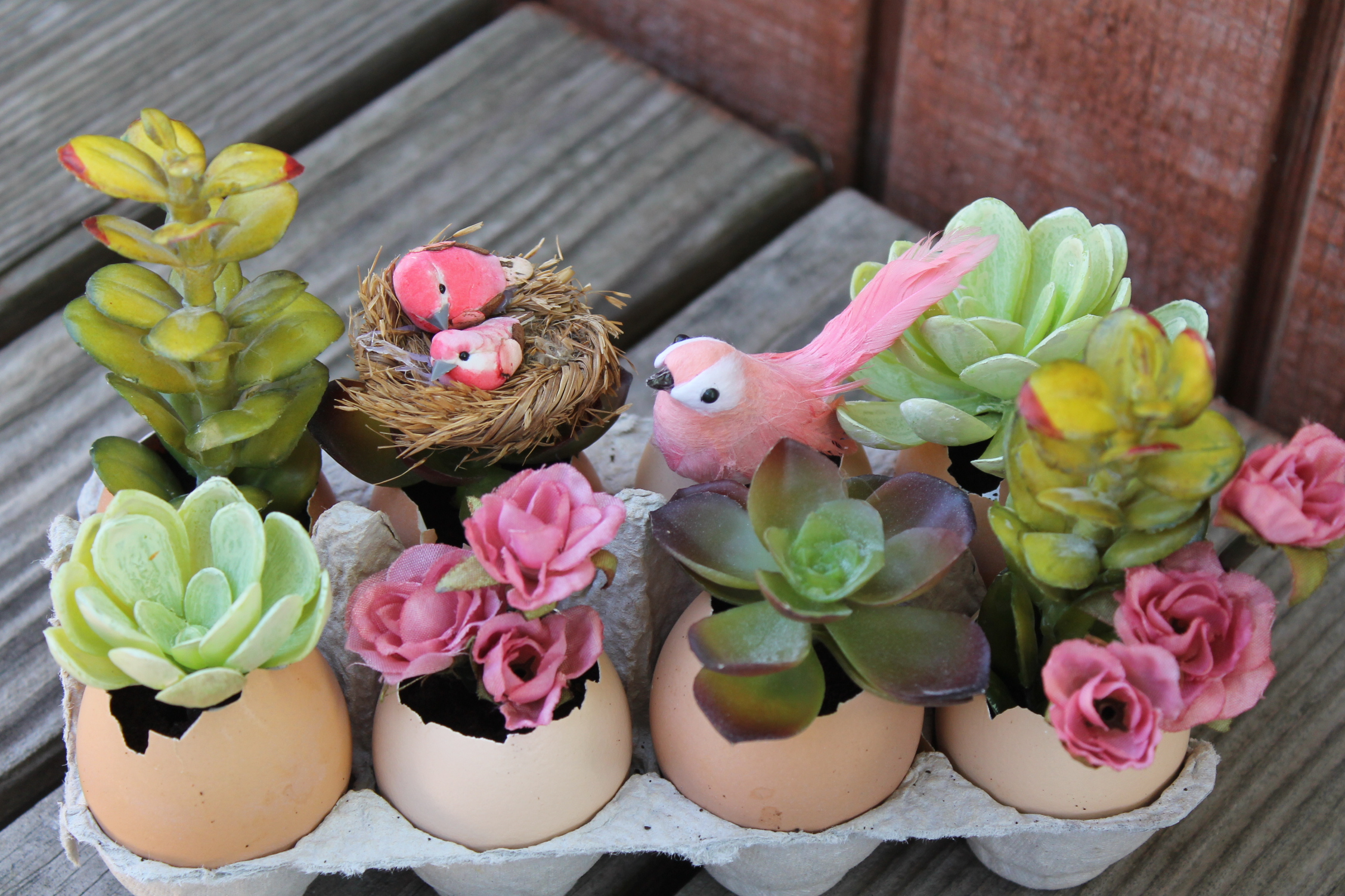 Miniture DIY Eggshell Garden | www.maritzagarcia.website