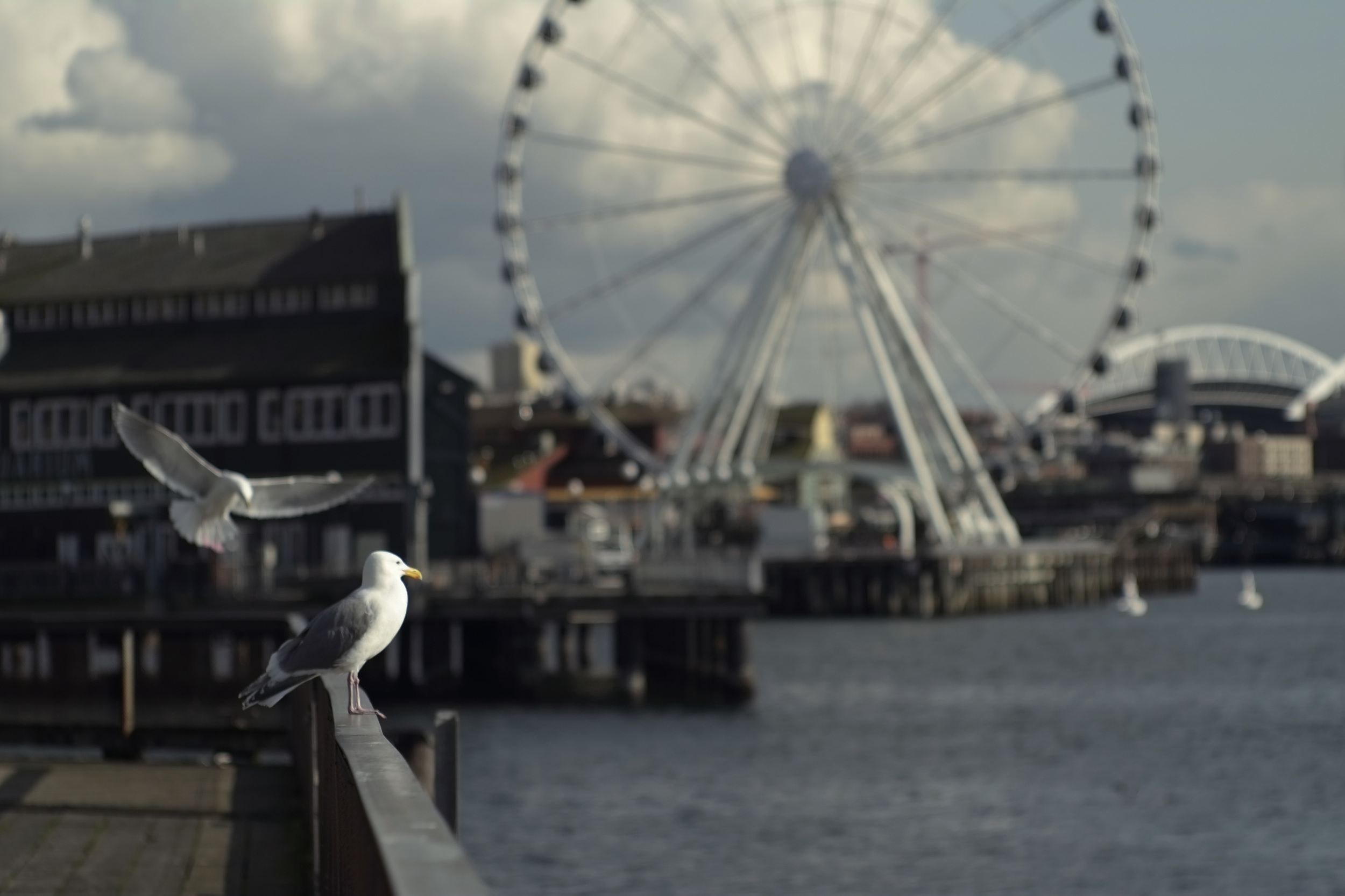 Waterfront, Seattle