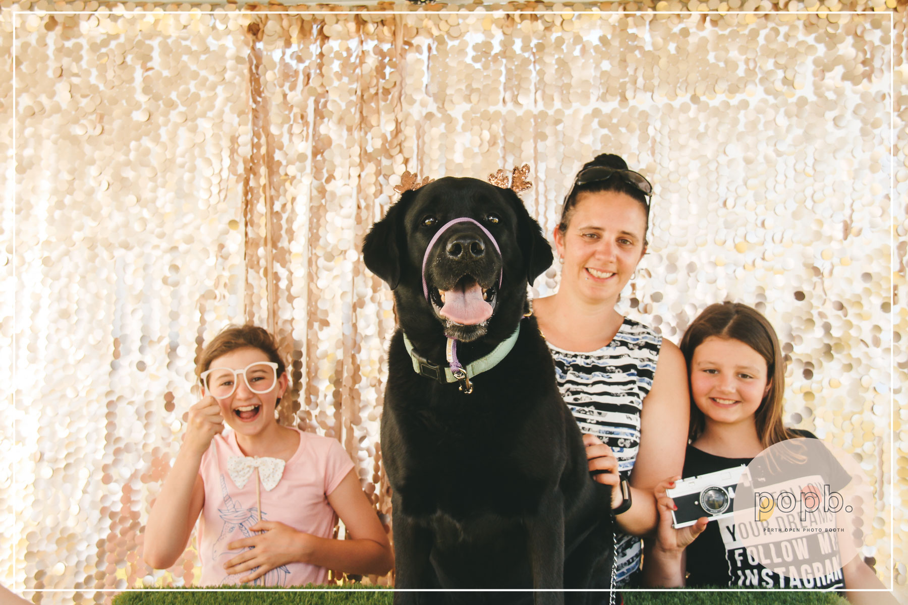 Movida Estate Santa Paws - PASSWORD: PROVIDED ON THE day- ALL LOWERCASE -