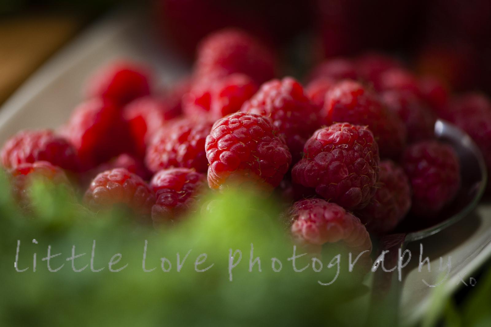 webphotographysydney-1007.jpg