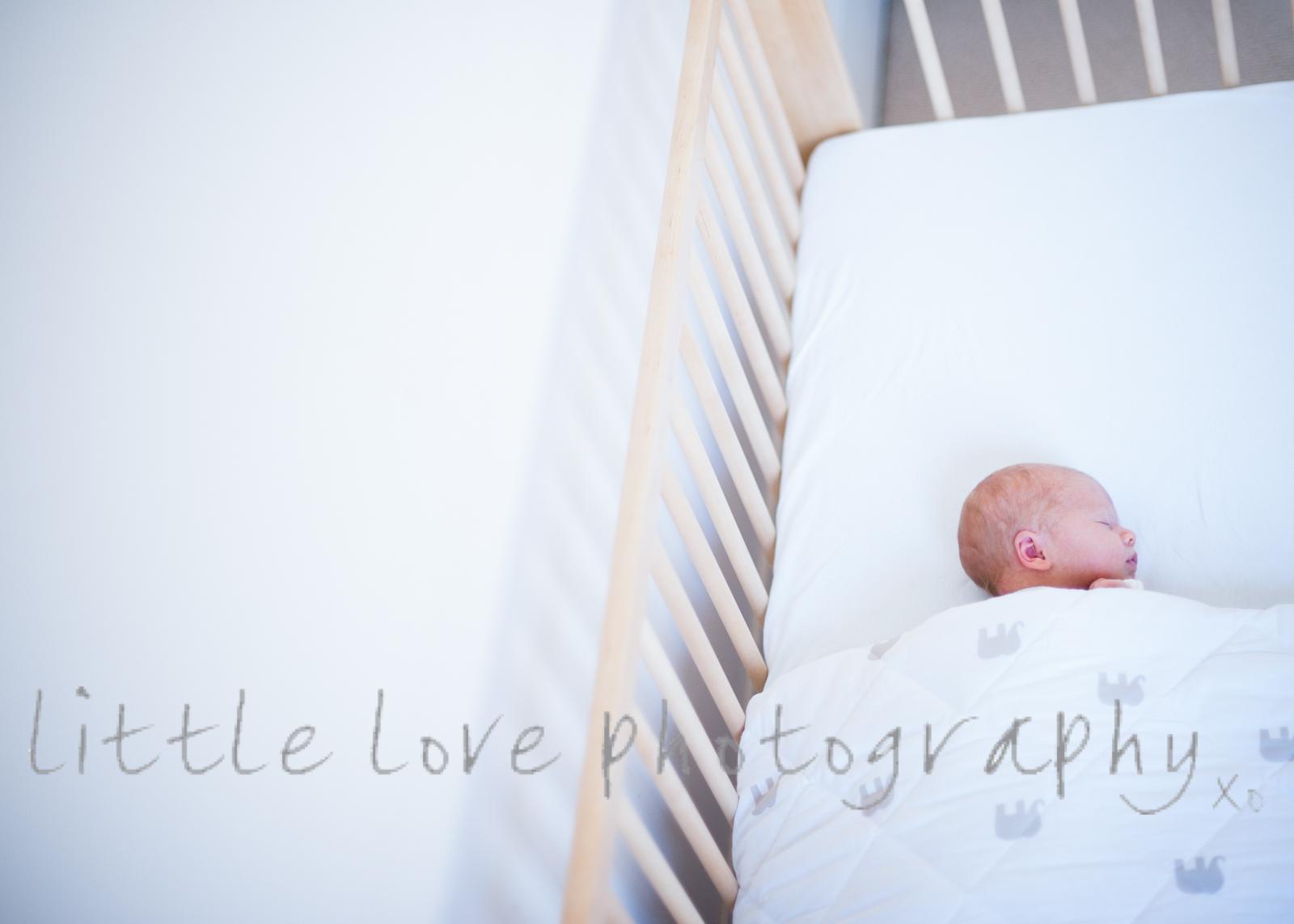 sydneybabyphotographer-1001.jpg