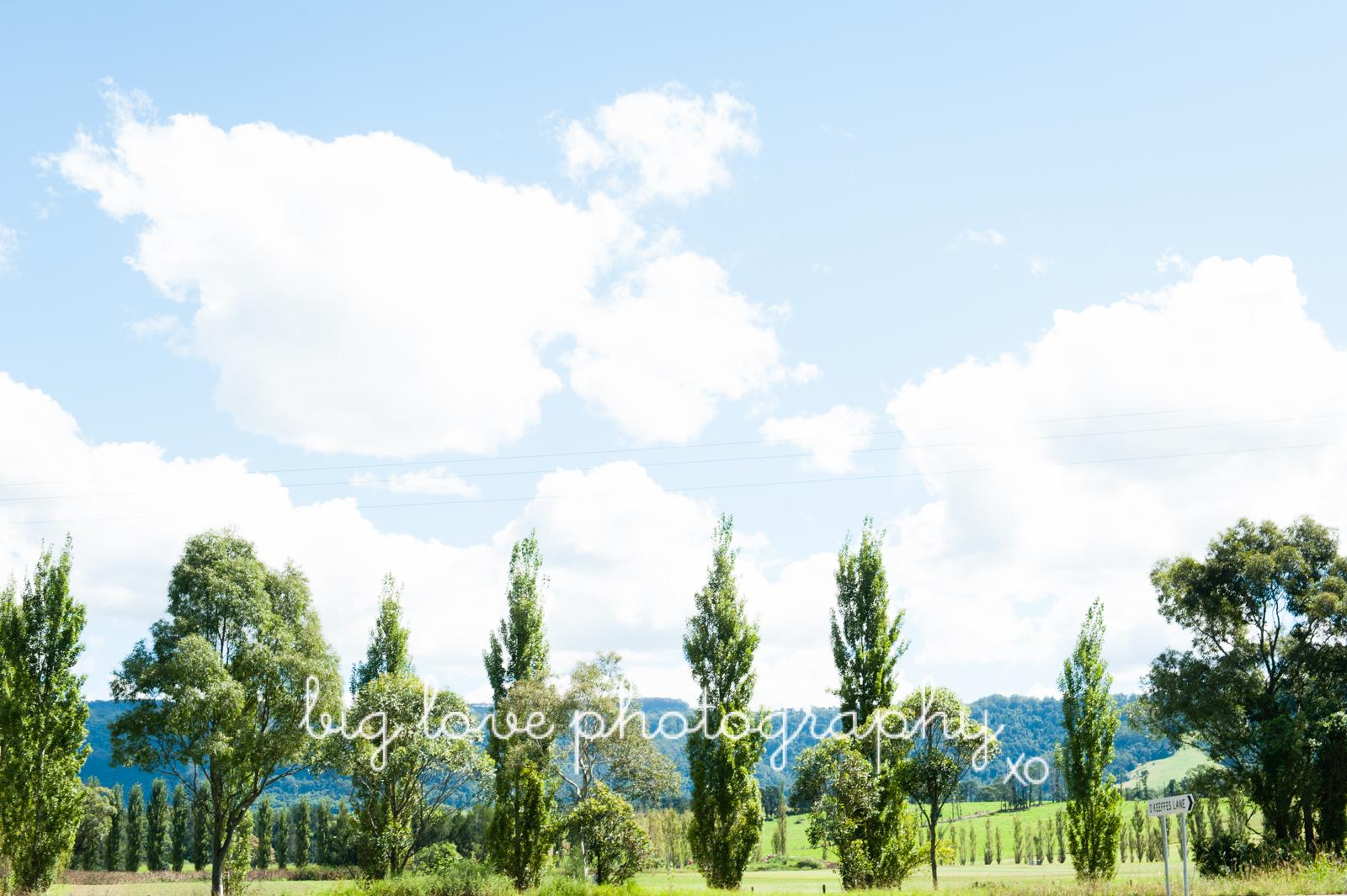sydneyweddingphotographer-1001.jpg