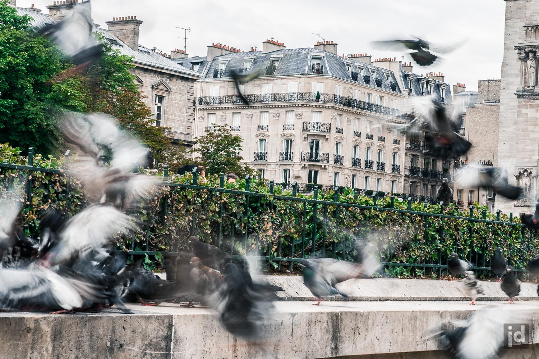 Paris_Photography_Jason_Davis_Images_037.jpg