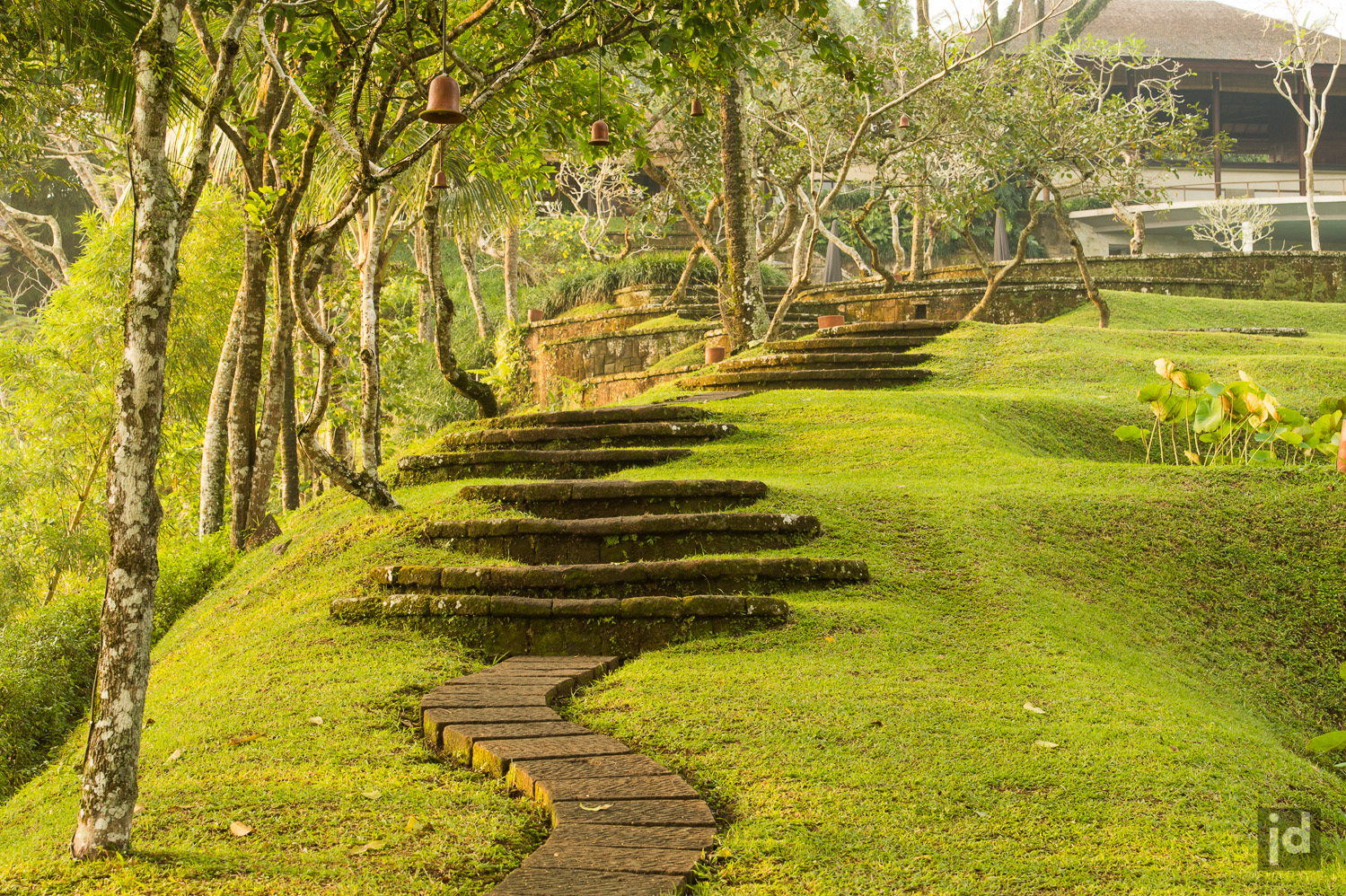 Bali_Indonesia_Photography_Jason_Davis_Images_031.jpg