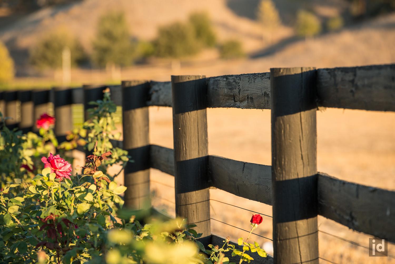 Santa_Ynez_California_USA_Photography_Jason_Davis_Images_012.jpg