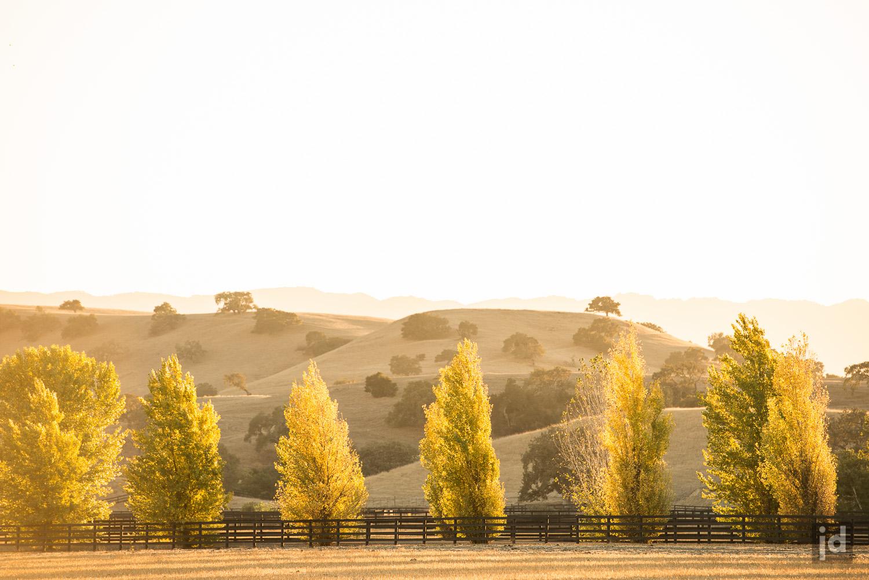 Santa_Ynez_California_USA_Photography_Jason_Davis_Images_013.jpg