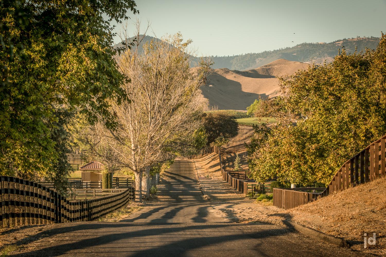 Santa_Ynez_California_USA_Photography_Jason_Davis_Images_018.jpg