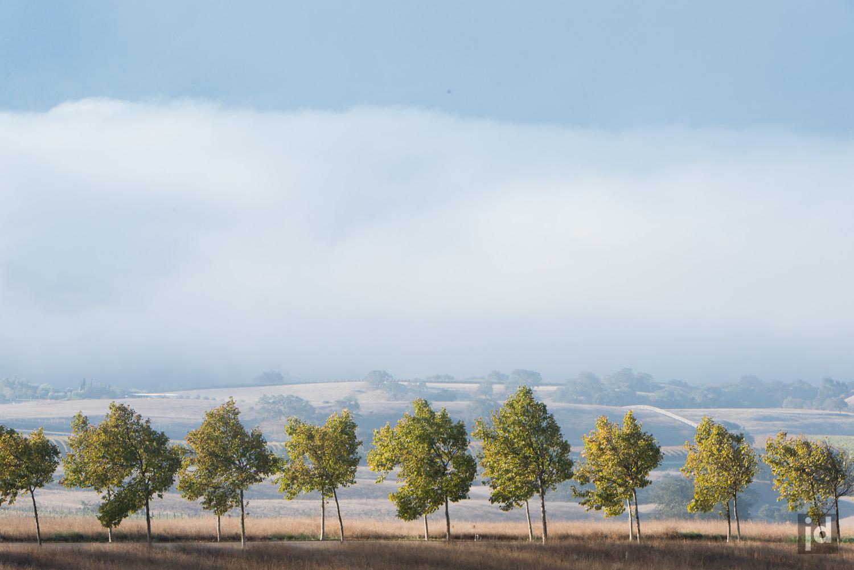 Santa_Ynez_California_USA_Photography_Jason_Davis_Images_027.jpg