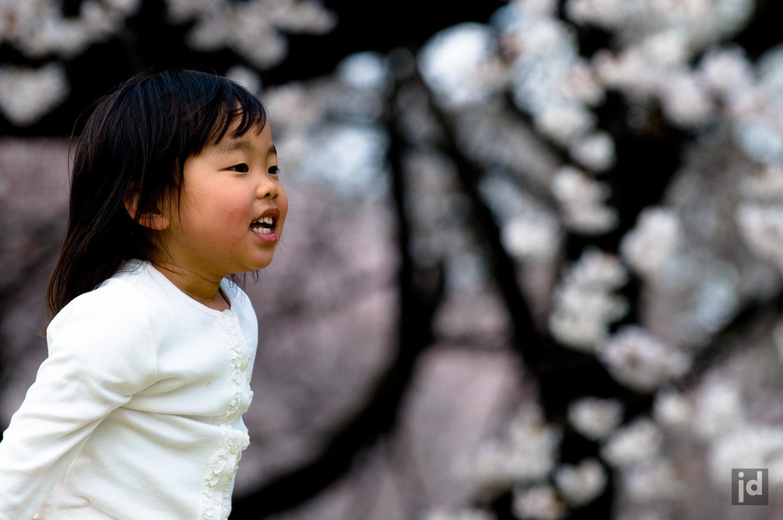 Japan_Photography_Jason_Davis_Images_025.jpg