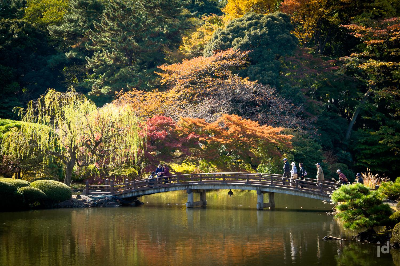 Japan_Photography_Jason_Davis_Images_026.jpg