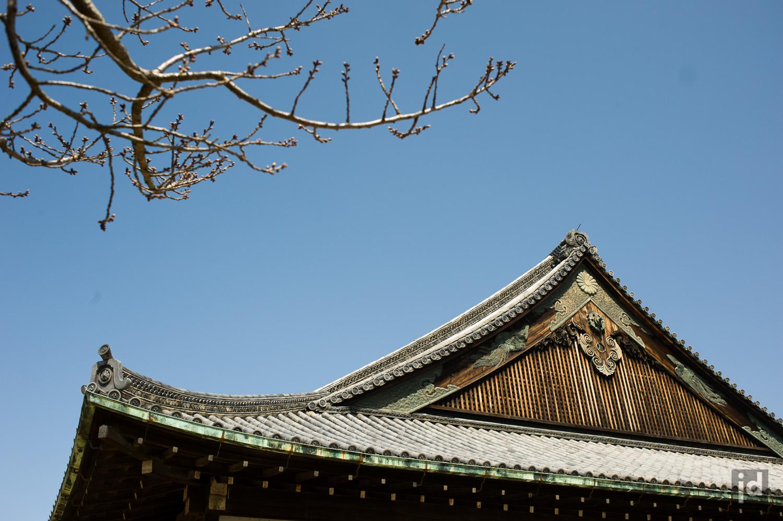 Japan_Photography_Jason_Davis_Images_037.jpg