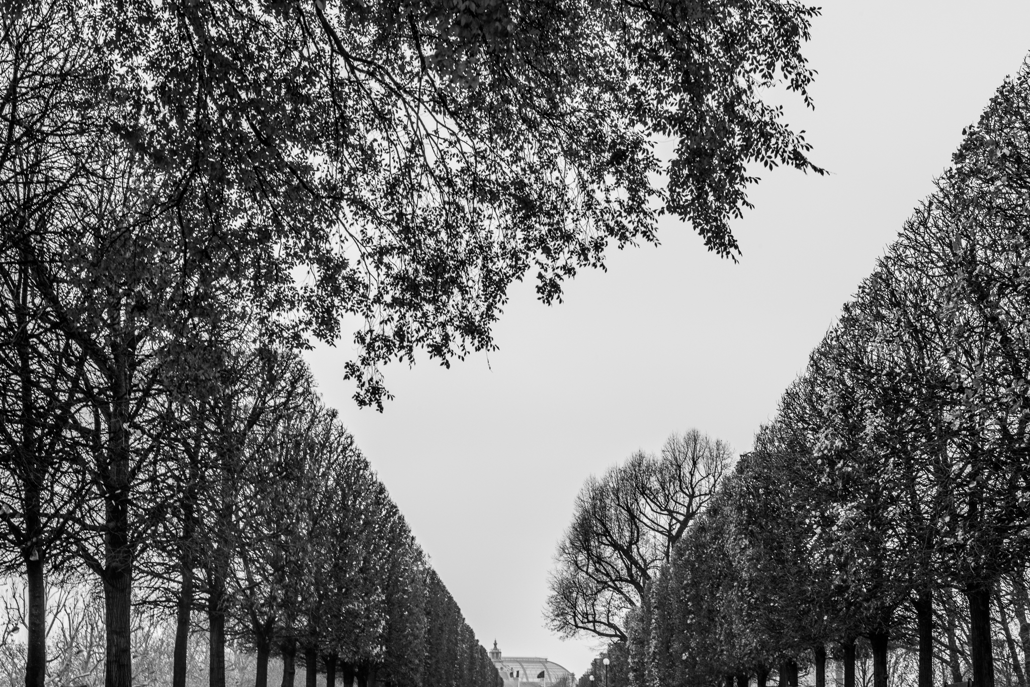 Jason-Davis-Images-Paris-0020.jpg